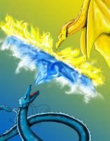 duel of the dragons by crazedt
