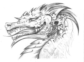 Dragon (UNFINISHED) by xlostfaith