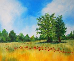 Poppy Field Final by mr-macd