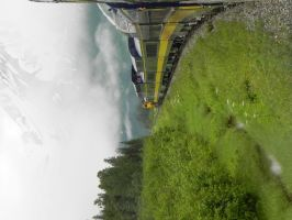 alaskan railways anchorage to seward by DemonDog47