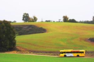 A Yellow Bus In A Green Field by NivaSimon
