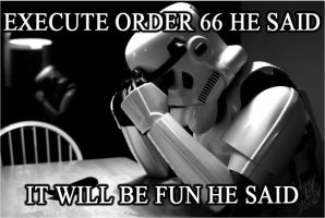 EXECUTE ORDER 66 by emmevi92