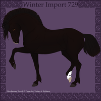 Winter Import 729 by Psynthesis