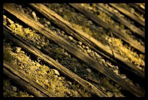 Decayed Tracks by creeperdude