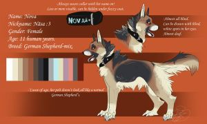 Nova Official Sheet Ref 2012 by SillyTheWolf