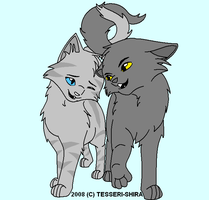 Graystripe and Silverstream by invaderliz100