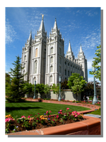 Spring in Bloom at the Salt Lake Temple by WillFactorMedia