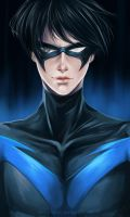 Nightwing by Ze-RoFruits