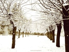Snow by Vianto Photography by Vianto