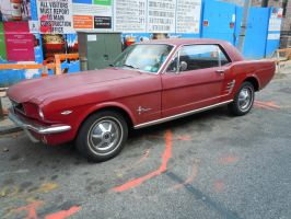 1966 Ford Mustang II by Brooklyn47