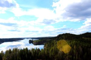 Lake Saimaa and forest by Antza2