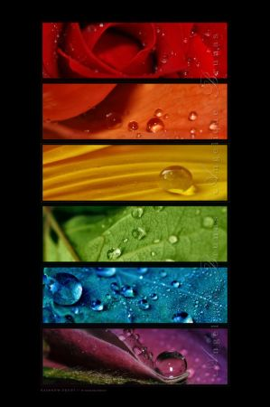 ___Rainbow_drops_________by_Liek