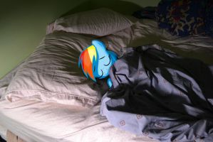 sleeping dashie by chineseninja