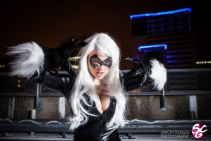 Black Cat 01 by Masubiii