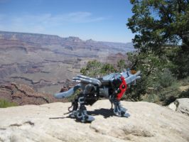 Red's Grand Canyon Adventure 4 by Liger-Zero-Schneider