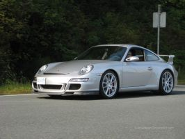 Silver GT3 by S-Amadeaus