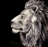India Ink Lion Drawing by NaturePunk