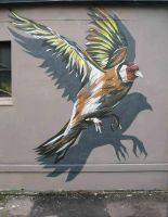 GOLDFINCH by GRAFFOFLARGE