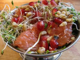 pomegranate, grapefruit mixed sprouts salad by chrisravensar