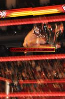 Raw after WM25 4 by boomboom316
