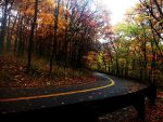 The Autumn Pass by Canthgyl