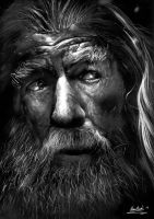 Gandalf The Grey by Liam J. York by MrYorkie