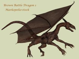 Brown Dragon 1 - Feb 17 08 by markopolio-stock