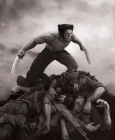 Wolverine Black and White by BrianLindahl