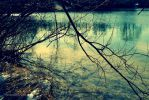 Winter Lake by IpomeaTricolor