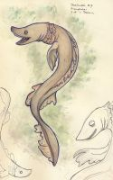 SW final day - Frilled Shark by Verduvlo