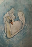 Swan on Watercolor by BugzAttack
