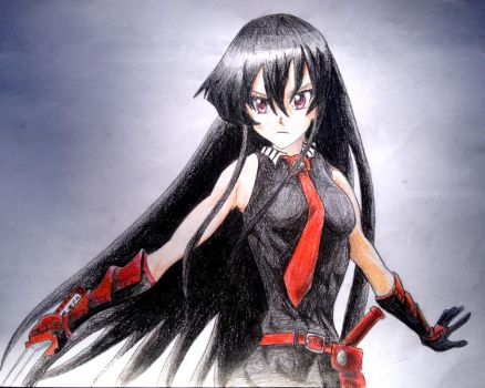 Akame 2 by AmosZZ