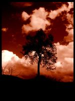Tree 3 by Ares0000