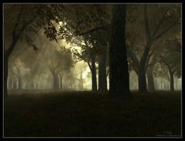 Forest of October by 00AngelicDevil00
