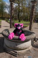 A cup of Pink by FotoFurNL