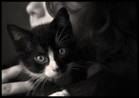 The Look... by Techo
