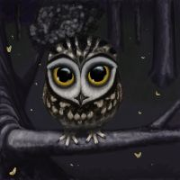 little  spotted owl by GaiaLuxis1