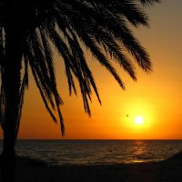 tunisian sunrise by Wilithin