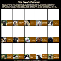 Dog Breed Challenge Meme by Goku-san