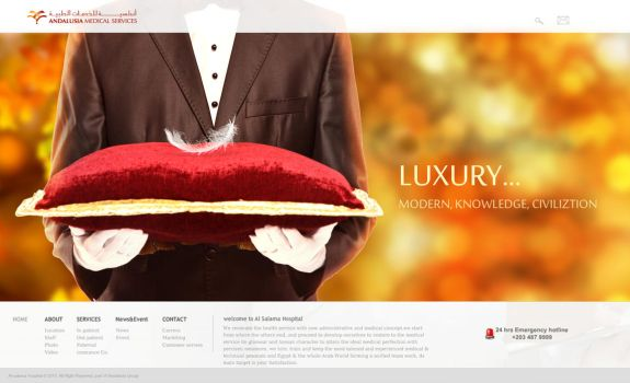 Andalusia Web site - Luxury 2 by mohamed-amin