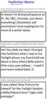 Filled Fanfiction Writers Meme! by BrittanyChayanne