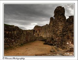 Denbigh Castle1 by CharmingPhotography