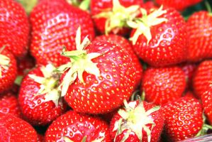 Fruity Fruit Strawberrys by Murachacha