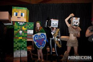 MineCon Cosplayers Pump Up the Crowd by CharmandersFlame