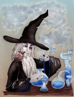 Wize Wizard by fritchie