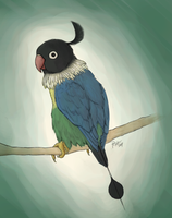 Realistic Chatot v2.0 by Selasphorus