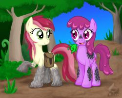 Second Chances by OBCOR