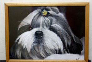 Framed Shih Tzu Painting by ffdiaries958