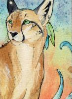 .: Taielias -ACEO :. by Shien-Ra