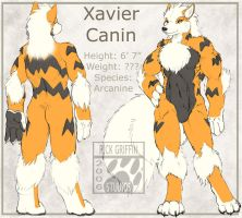 Xavier Canin Character Sheet by RickGriffin